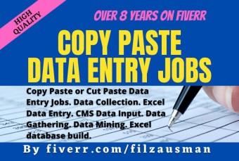 do-3-hours-copy-paste-data-entry-job.jpg