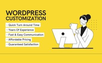 do-any-wordpress-customization-in-12-hours.jpg