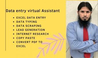 data entry virtual Assistant.jpg